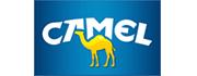 Camel Cigarettes Brand