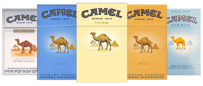 Camel Cigarette Brand Exporters